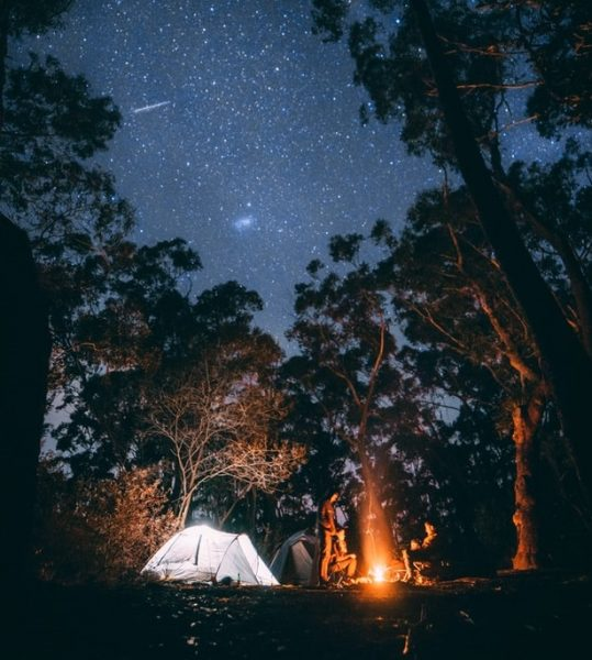 camping with todllers | bonfire