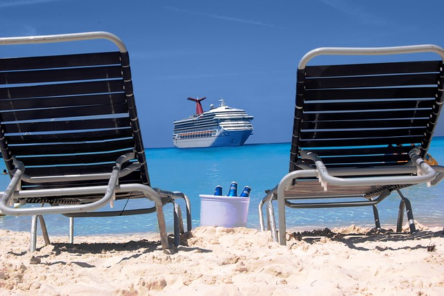 Carnival CEO said the entire industry was working collectively on a resumption of cruising